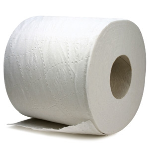 Eco Tissue Toiletpapier - 2 laags - 400 vel
